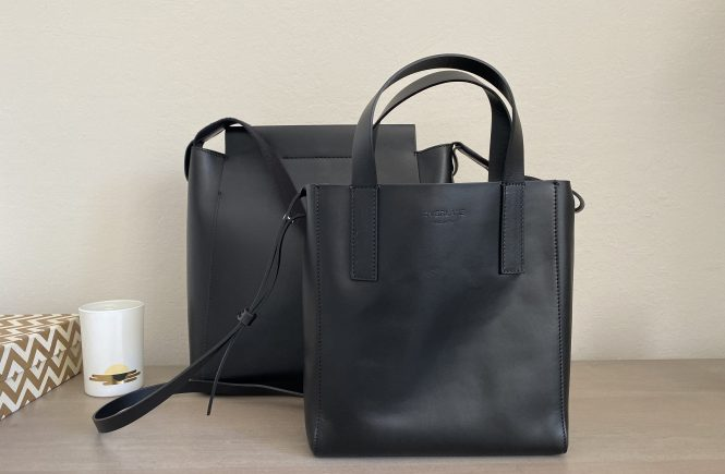 Everlane Day Tote Mini Review