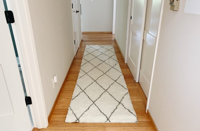 Ruggable Plush Rug Honest Review
